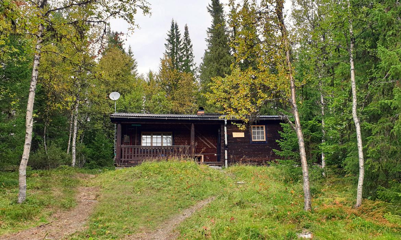 LJ 6 Drevemo – Ljungdalen